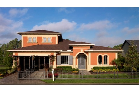 Meadow Point Wesley Chapel Florida Real Estate | Wesley Chapel Realtor | New Homes for Sale | Wesley Chapel Florida
