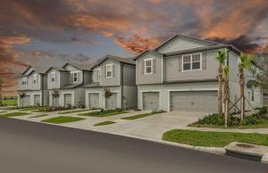 Rego Palms New Town Homes Tampa Florida Real Estate   Tampa Florida Realtor   New Homes Communities