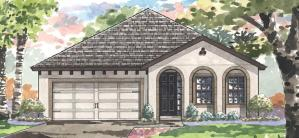 The IBIS II Homes By Westbay Triple Creek Riverview Florida Real Estate | Riverview Realtor | New Homes for Sale | Riverview Florida
