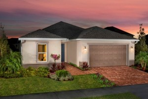 Ibis Cove II at South Fork Riverview Florida Real Estate   Riverview Realtor   New Homes for Sale   Riverview Florida