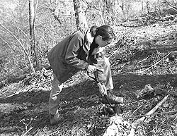 Lou Agnew of the UEC Burdock Brigade