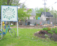 Greenfolks Garden