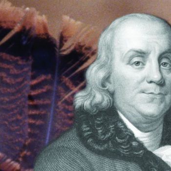 01 ben_franklin_turkey