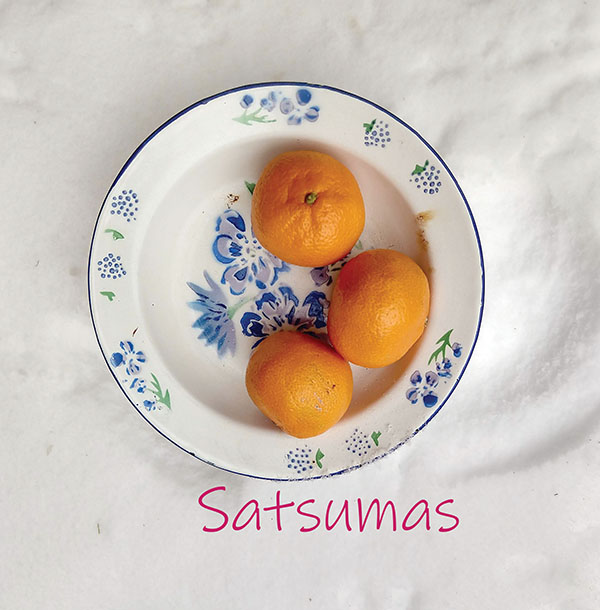 Satsumas web