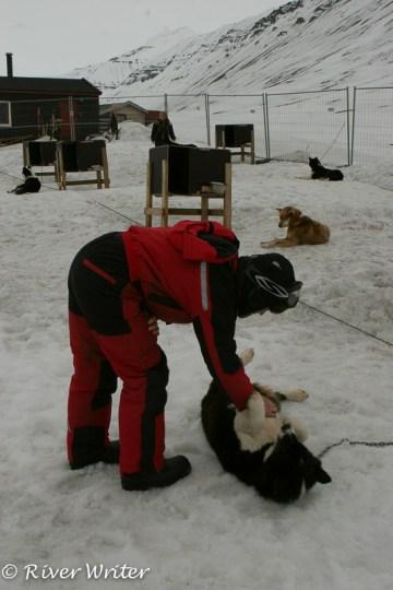 Svalbard 031-15
