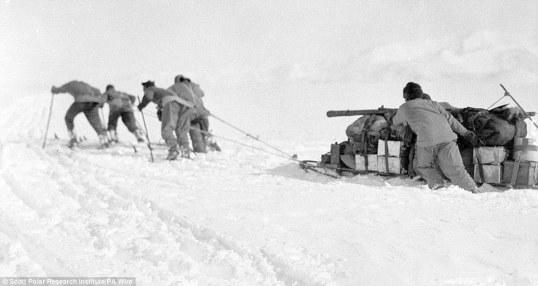 (left to right) Cherry Garrard, Henry Robertson Bowers, Patrick Keohane, Thomas Crean and Dr Edward Wilson haul their supplies on Beardmore Glacier