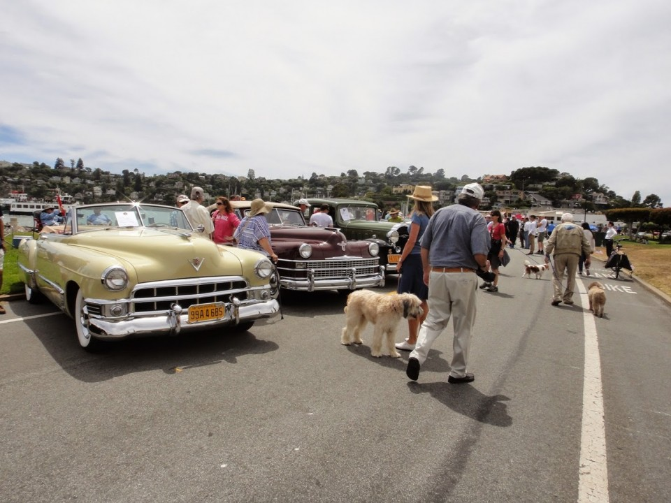 Tiburon Car Show. photo: M.Uz