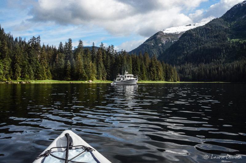 Kayaking_mistyfjords-1542