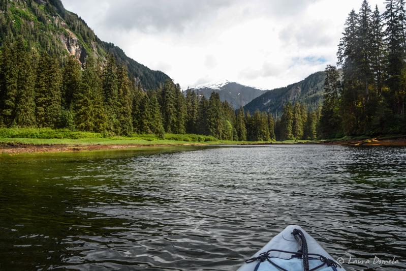 Kayaking_mistyfjords-1503