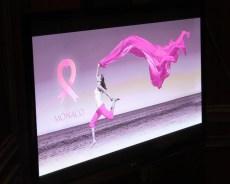 pink-ribbon-casino-2013-022