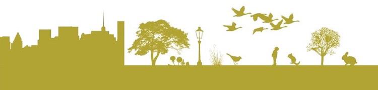 Biodiversity cityscape