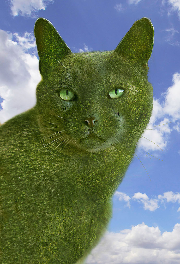 The Topiary Cat's Portrait.jpg