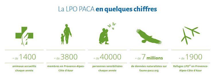 LPO Stats