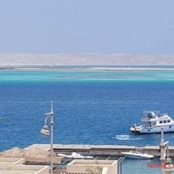 Amina - Hurghada Egypt