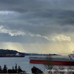 Carolyn - Seattle WA