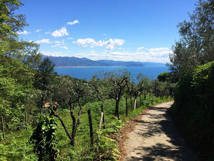 Gita fuori porta a Portofino