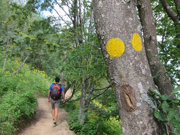 Parco dell'Antola passeggiata tra i boschi