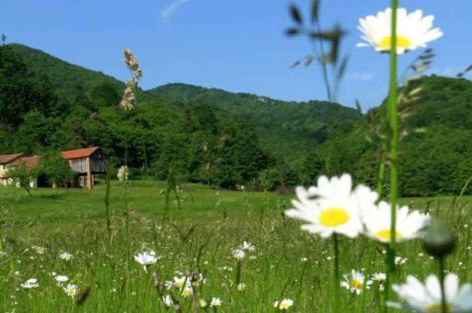 Riserva Naturale dell Adelasia cascina Miera e prato in fiore