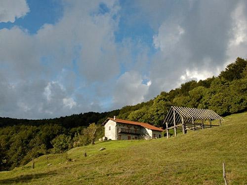 Bosco dell'Adelasia e la sua cascina Miera