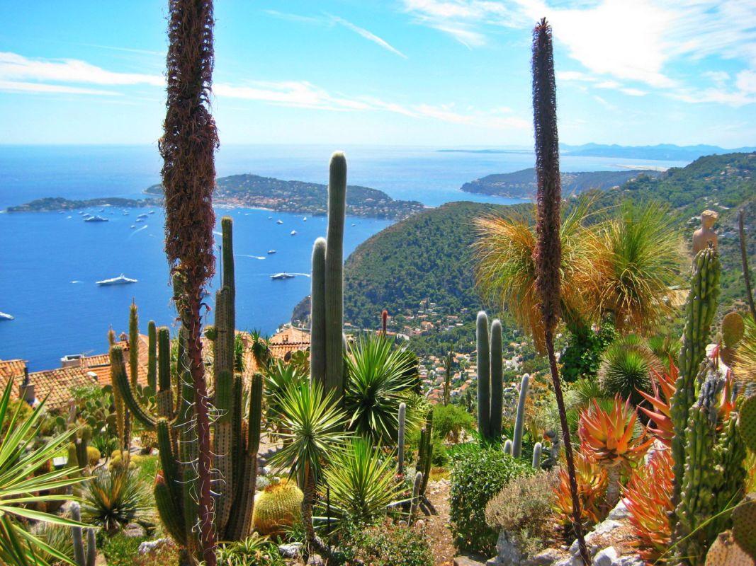 Costa Azzurra e gita nel giardino Ezè con particolare su cactus