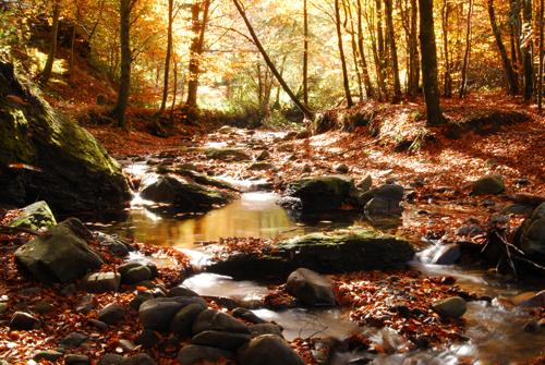 autunno_brasimone