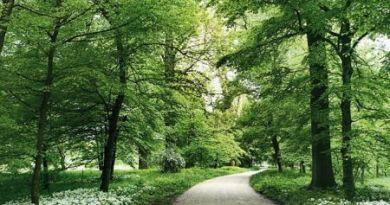 parchi-italiani-parco-del-castello-racconigi