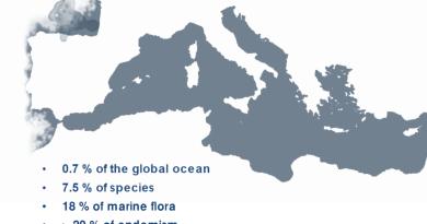 Dorra MAAOUI biodiversity biodiversità