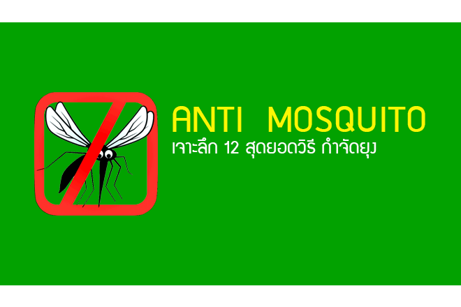 mosquitoeliminatecover.png