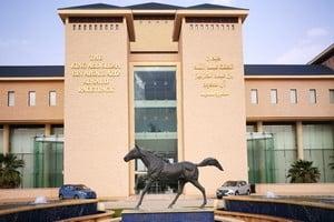 ميدان الملك عبدالله بن عبدالعزيز للفروسية بمنتجع نوفا