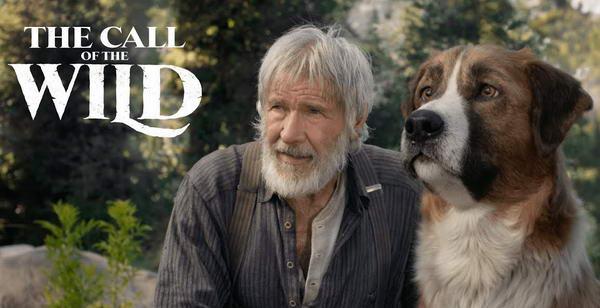 فيلم المغامرات العائلي The Call of the Wild بطولة النجم العالمي هاريسون فورد يبدأ عرضه في صالات السينما السعودية بتاريخ 20 فبراير القادم