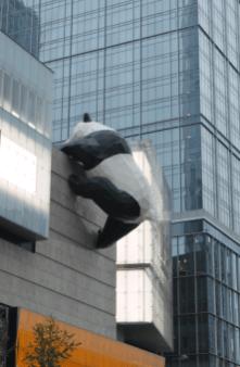 Gros Panda, Centre Ville Chengdu