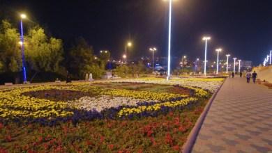 """صورة بالصور.. 800 ألف زهرة تزين أبها استعدادا لإعلانها """"عاصمة السياحة العربية"""""""