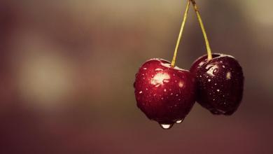 Photo of «الكرز» من افضل فواكه الصيف المنعشة.. فما هي فوائدة؟