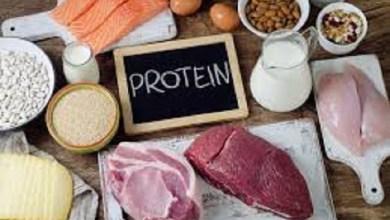 صورة رجيم البروتين للتخسيس السريع والصحي