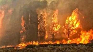 Photo of أسباب حرائق لبنان