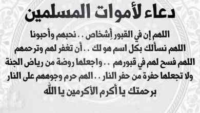 Photo of دعاء الميت , أجمل الأدعية لفقيدك