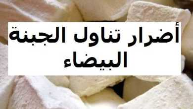 Photo of 3 أضرار عند تناول الجبنة البيضاء