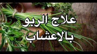صورة أعشاب تساعد في التخفيف من أعراض الربو