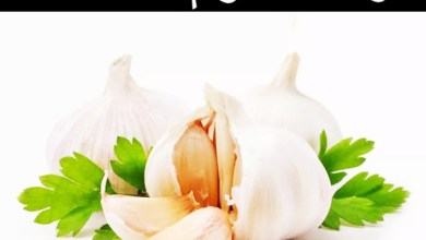صورة فوائد الثوم للجسم وأهم الأمراض التي يعالجها الثوم