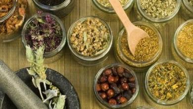 صورة الأعشاب الفعالة في إنقاص الوزن بشكل طبيعي
