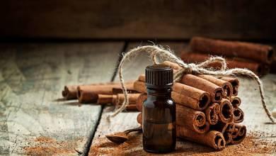 صورة أهمية تناول القرفة الساخنة أثناء الدورة الشهرية