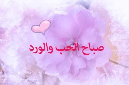 صباح الحب صباح الورد