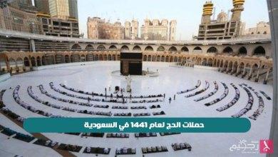 Photo of حملات الحج لعام 1441 في السعودية
