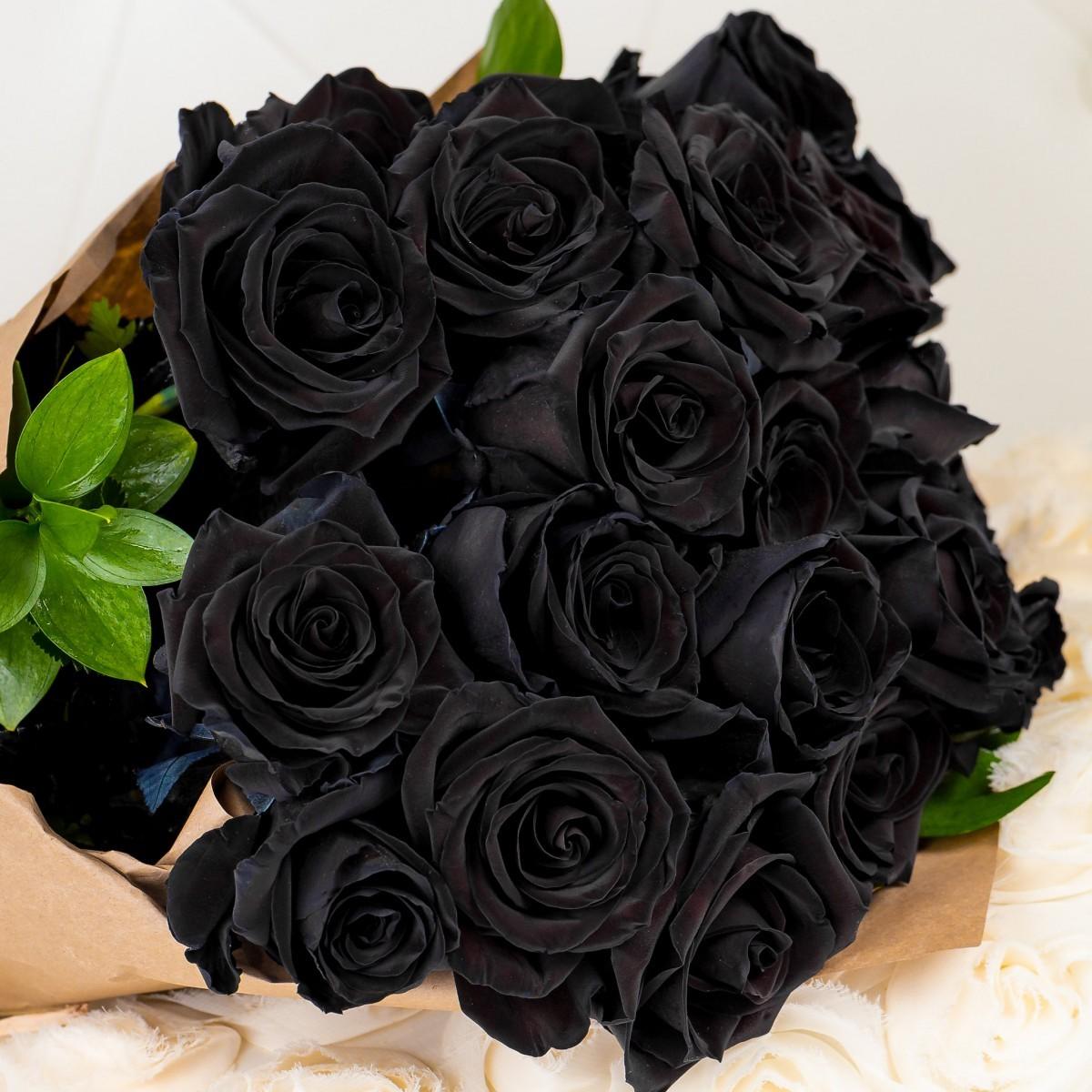 الورد الاسود