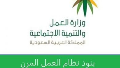 Photo of بنود عقود نظام العمل المرن