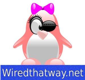 Wiredthatwaylogo1