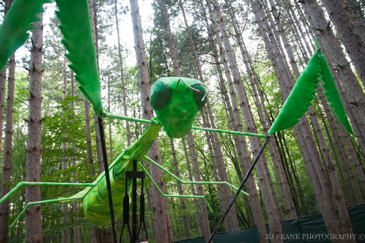ElectricForest_RJFPHOTO_07_12-27