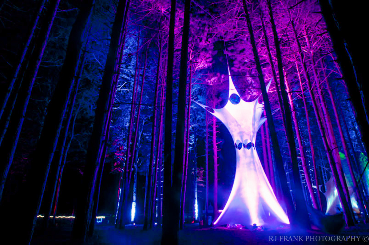 RJFPhotos_ElectricForest_2011-38