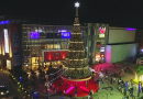 "Unveiling the Tallest Christmas Tree & Launch of ""World of Christmas"" 