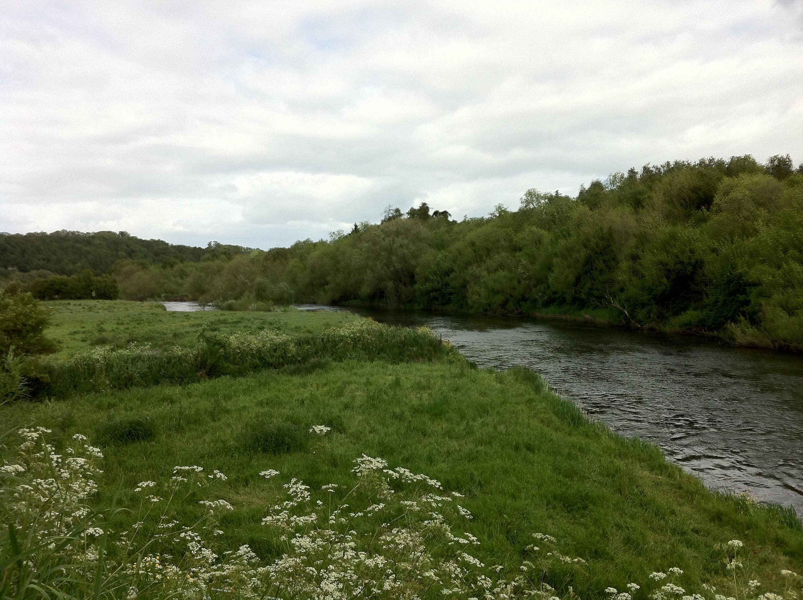 From Across The Irish Sea R J Nello